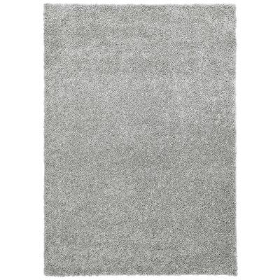Broncho Gray Area Rug Rug Size: 5 x 7