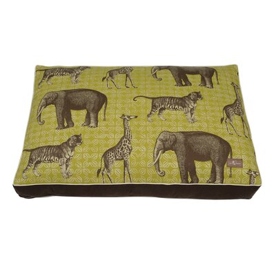 Safari Indoor/Outdoor Floor Pillow Color: Peridot