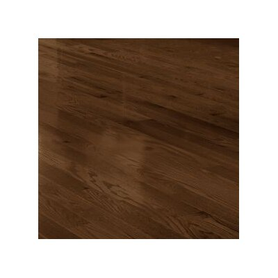 4 Solid Red Oak Hardwood Flooring in Mocha