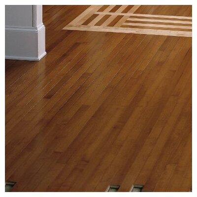 2-1/4 Solid Dark Maple Hardwood Flooring in Sumatra