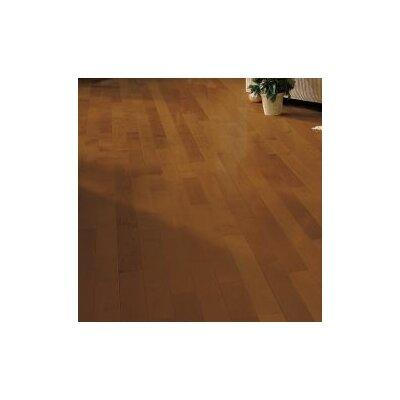 3-1/4 Solid Dark Maple Hardwood Flooring in Sumatra