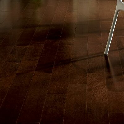 Westmoreland 3-1/4 Solid Maple Hardwood Flooring in Low Gloss Cocoa Brown