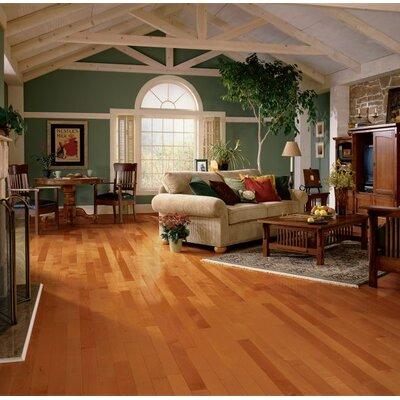 Sugar Creek 3-1/4 Solid Maple Hardwood Flooring in Cinnamon