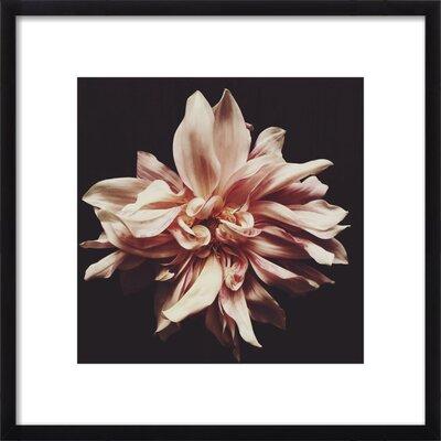 Syd Framed Print, Artfully Walls Size: 12 H x 12 W x 1.5 D