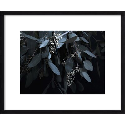 Miss Jade Framed Print, Artfully Walls Size: 18 H x 22 W