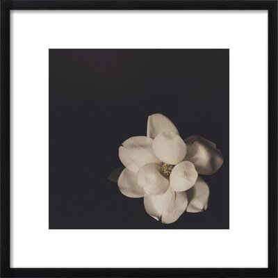 Forever Framed Giclee Print, Artfully Walls Size: 20 H x 20 W