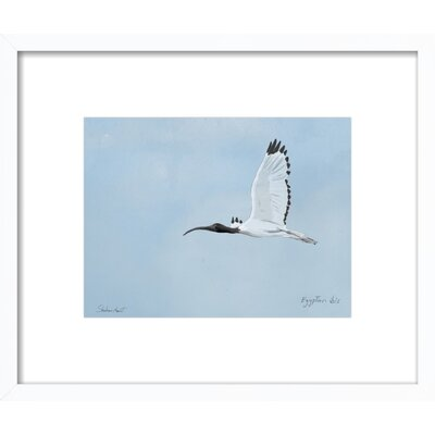 Egyptian Ibis Framed Giclee Print, Artfully Walls Size: 12 H x 14 W