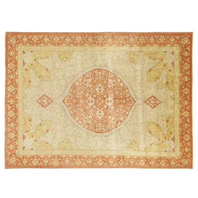 Oriental Hand-Knotted Beige Area Rug