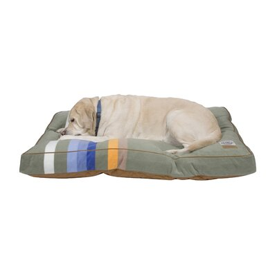 Rocky Mountain National Park Pet Pillow Size: Large
