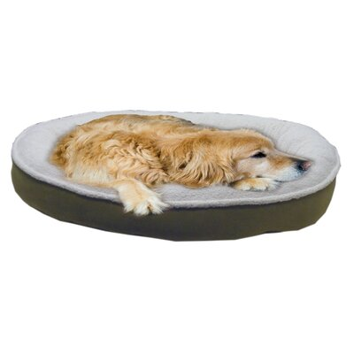 Cloud Sherpa and Faux Suede Comfy Cup Dog Pillow Size: Large (42 L x 36 W), Color: Willow