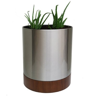 Knox Stainless Steel Pot Planter Size: Small CSSCPS-WB