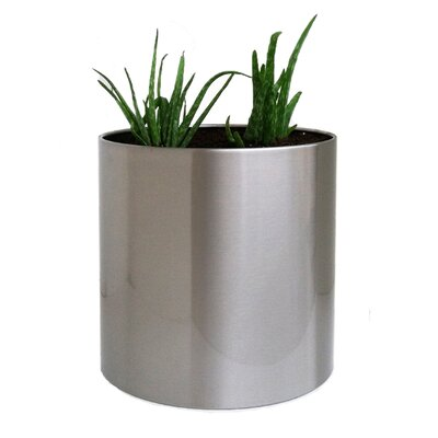Stainless Steel Pot Planter Color: Silver, Size: Small CSSCP-S