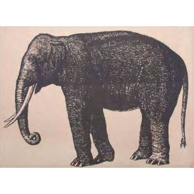 Elephant Placemat (Set of 4)