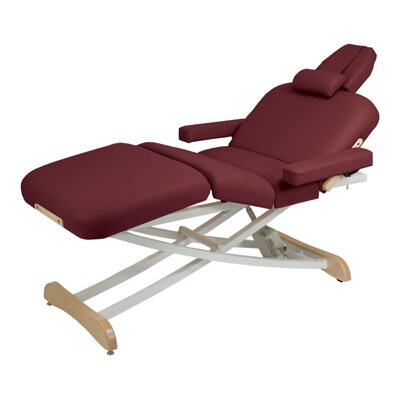Elegance Deluxe Electric Massage Table Color: Burgundy
