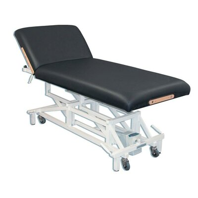 McKenzie Lift Back Electric Massage Table Color: Black
