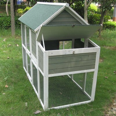 Coops and Feathers� Superior Hen House with Free Range Door