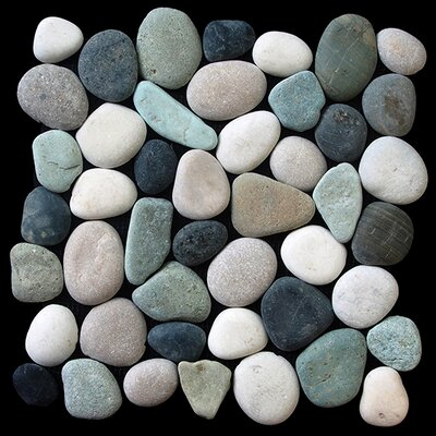 Classic Pebble Random Sized Natural Stone Pebble Tile in Multi