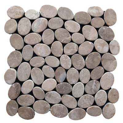 Coin Random Sized Natural Stone Pebble Tile in Tan
