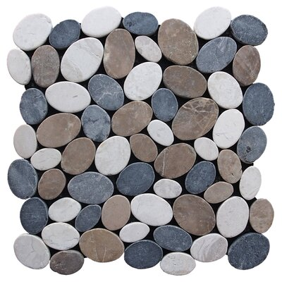 Coin Random Sized Natural Stone Pebble Tile in Multi