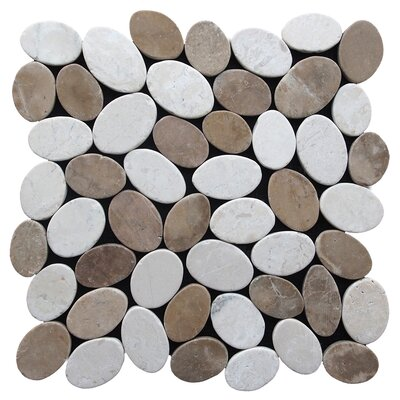 Coin Random Sized Natural Stone Pebble Tile in Tan White Blend