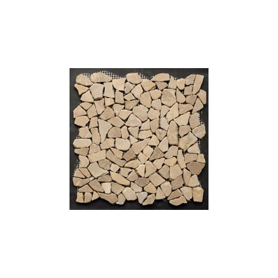 Mini Fit 11.75 x 11.75 Natural Stone Pebble Mosaic Tile in Tan
