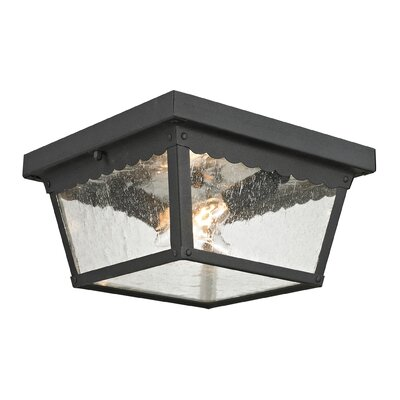 Springfield 2-Light Flush Mount Finish: Matte Textured Black