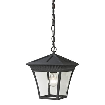 Berrywood 1-Light Hanging Lantern Color: Matte Textured Black
