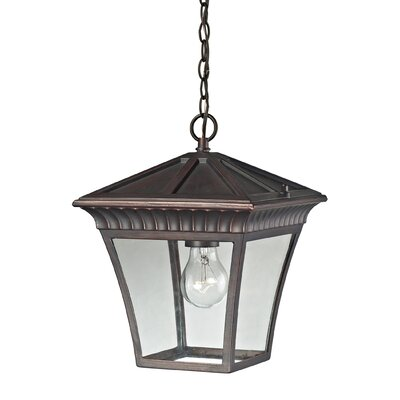 Berrywood 1-Light Hanging Lantern Finish: Hazelnut Bronze