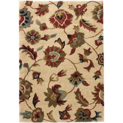 Avenue Marcy Floral Ivory Area Rug Rug Size: Rectangle 67 x 93