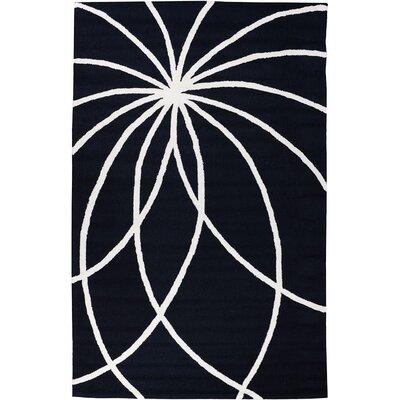 Everest Swirls and Spirals Black Area Rug Rug Size: 5 x 76