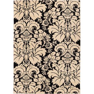 Sydney Damask Toile Black / Ivory Area Rug Rug Size: 53 x 73