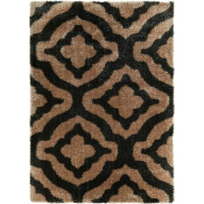 Feather Jesse Trellis Black Area Rug Rug Size: Rectangle 53 x 73