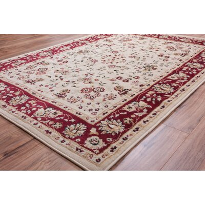 Coggrey Classic Ivory Area Rug Rug Size: 5 x 7