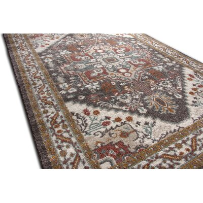 Ceri Traditional Medallion Brown Area Rug Rug Size: 53 x 73