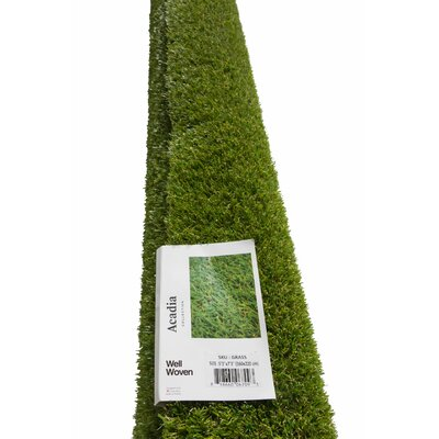 Grimes Artificial Green Indoor/Outdoor Area Rug Rug Size: 53 X 73
