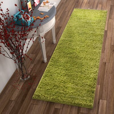Dondre Green Indoor Area Rug Rug Size: 67 x 910