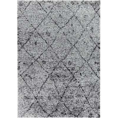 Walraven Gray Indoor Area Rug Rug Size: 33 x 53