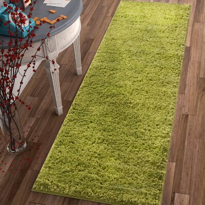 Dondre Green Indoor Area Rug Rug Size: Runner 2 x 73