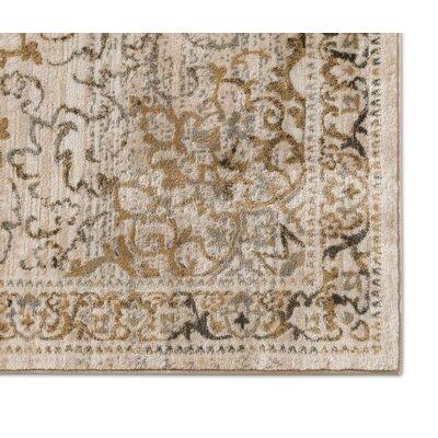 Abramowitz Beige/Gray Area Rug Rug Size: 53 x 73
