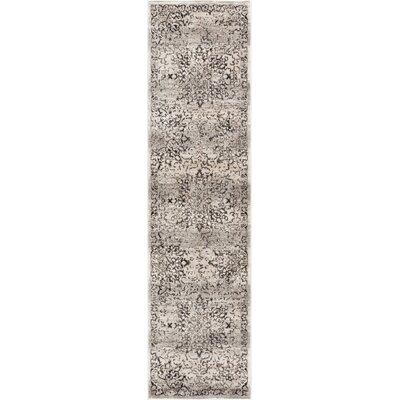 Abramowitz Gray Area Rug Rug Size: Runner 27 x 91