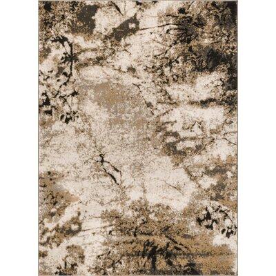 Emmi Gray Area Rug Rug Size: 311 x 57