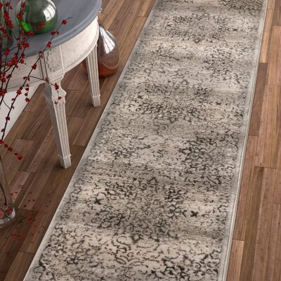 Abramowitz Gray Area Rug Rug Size: Runner 27 x 910