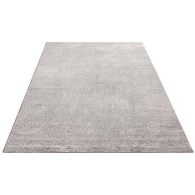 Qichen Outstanding Modern Solid Light Gray Area Rug Rug Size: 710 x 910