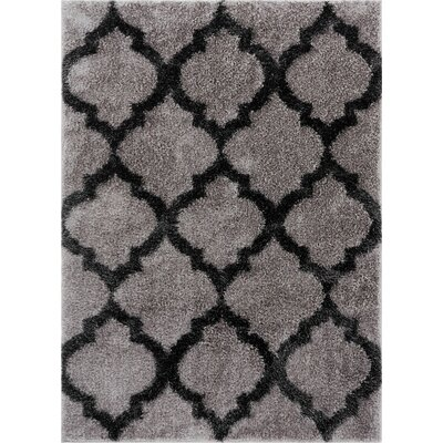 Aranson Humble Moroccan Lattice Shag Gray Area Rug Rug Size: Rectangle 67 x 93