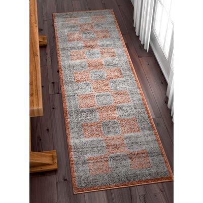 Arney Copper/Gray Area Rug Rug Size: Runner 23 x 73