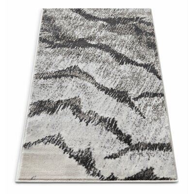 Shenelly Gray Area Rug Rug Size: 23 x 311