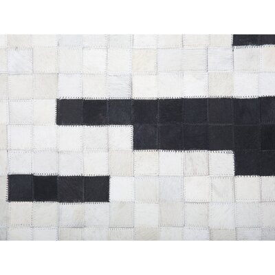 Iollan Black/White Area Rug Rug Size: Rectangle 27 x 411