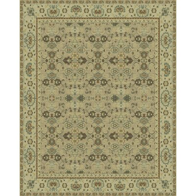 Traditionals Rug Rug Size: Rectangle 3 x 5