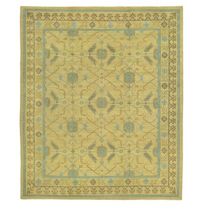 Traditionals Rug Rug Size: 3 x 5