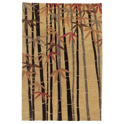 Chic & Modern Brown Rug Rug Size: 9' x 12'